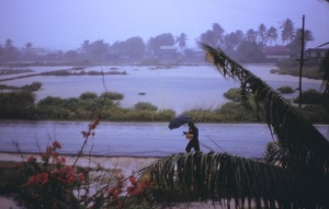 Looking Towards the Back Dam in Rainy Season
